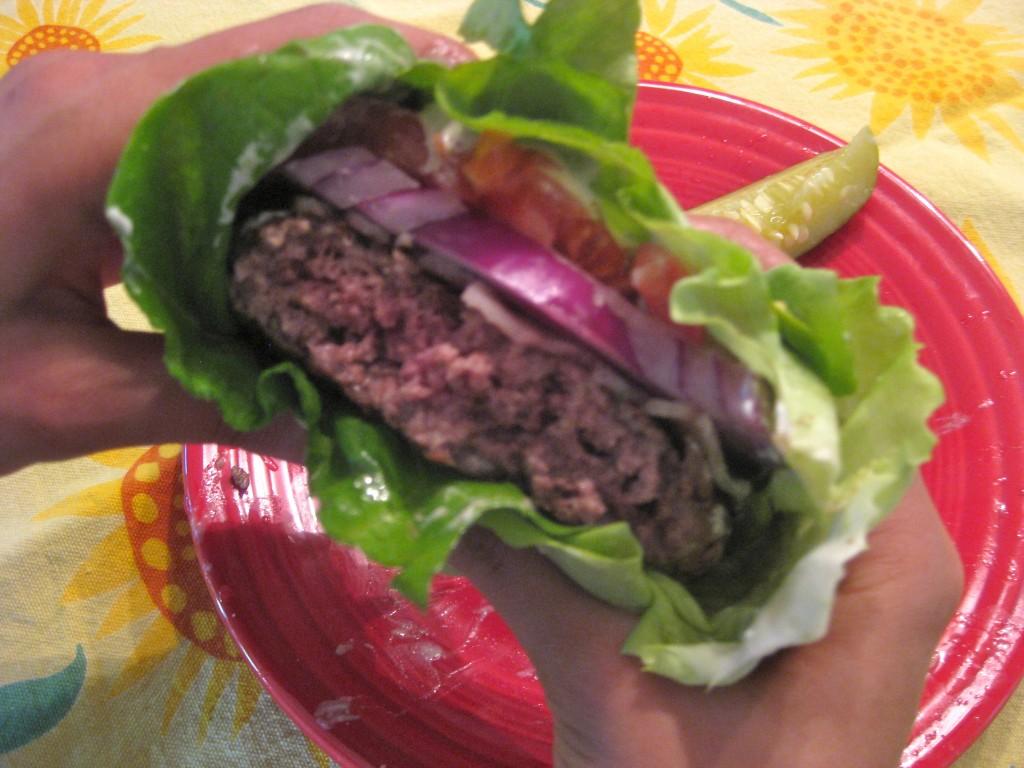 lo-carb cheeseburger, protein burger,
