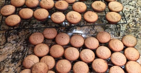 Cinnamon Walnut Mini Muffins